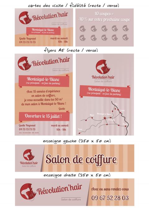 Planche communication visuelle Révolution'hair 2015