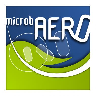 Logo congrès MicrobAERO 2013
