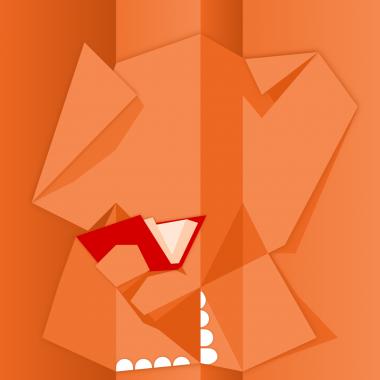 Illustration mentions légales cartons-patte-df.com